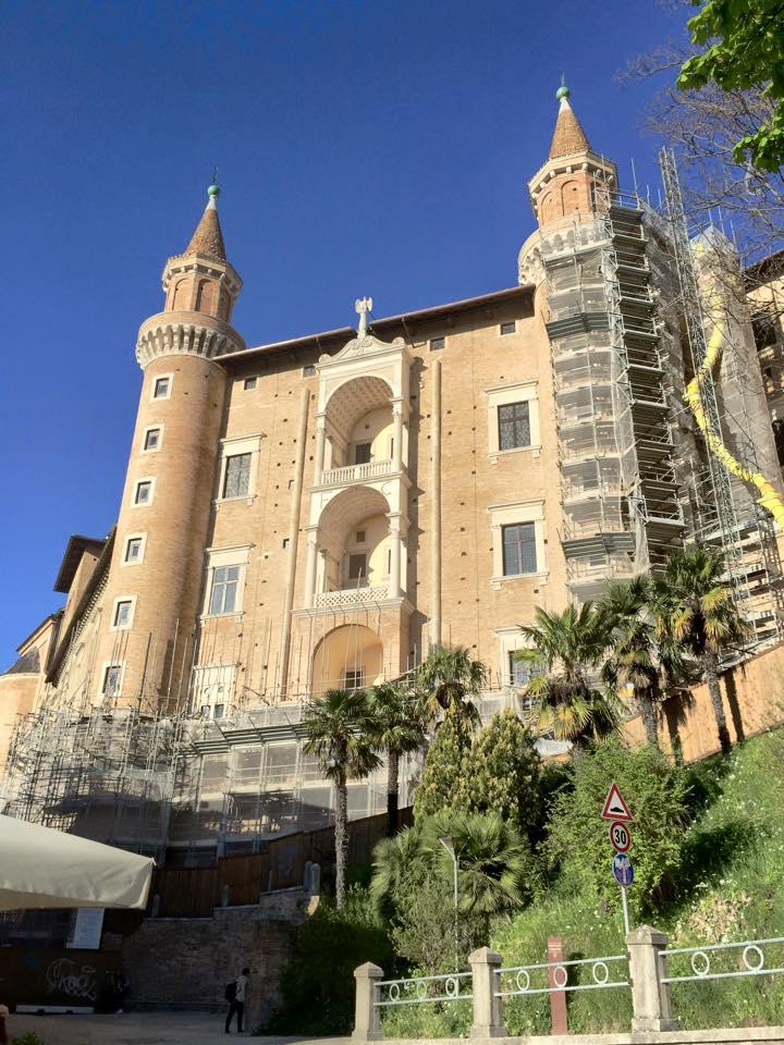 Urbino Torricini