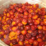 Apricot and plum preserves