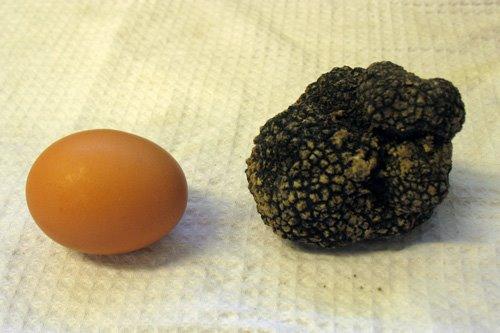scorzone-uovo