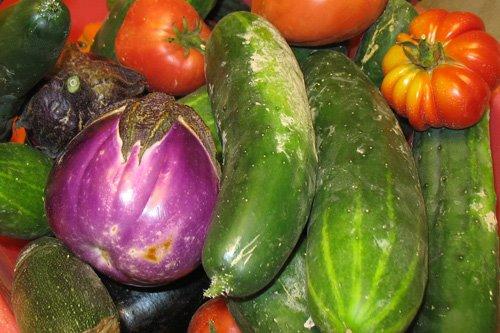 verdure-miste