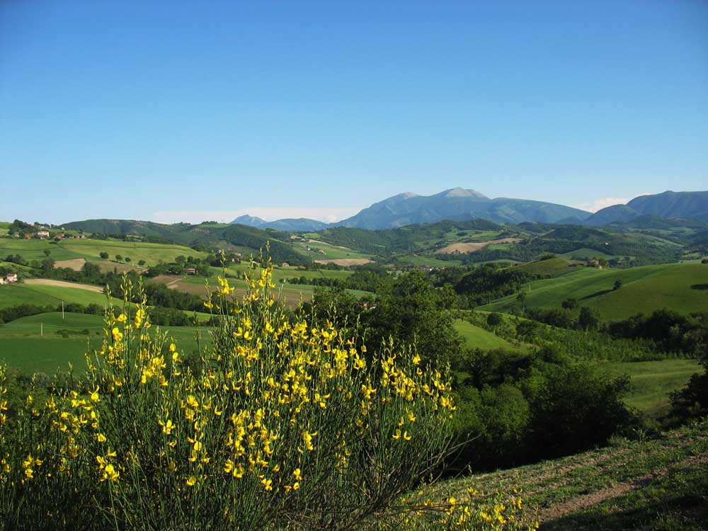 Le Marche walks 8