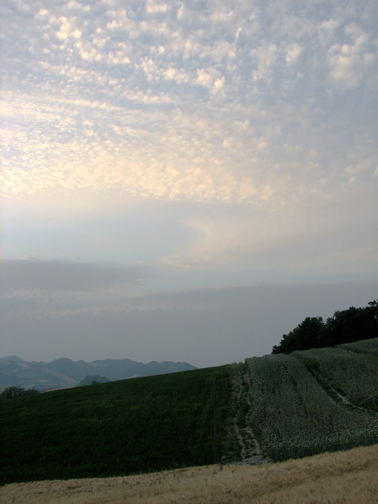 dusk over Le Marche countryside