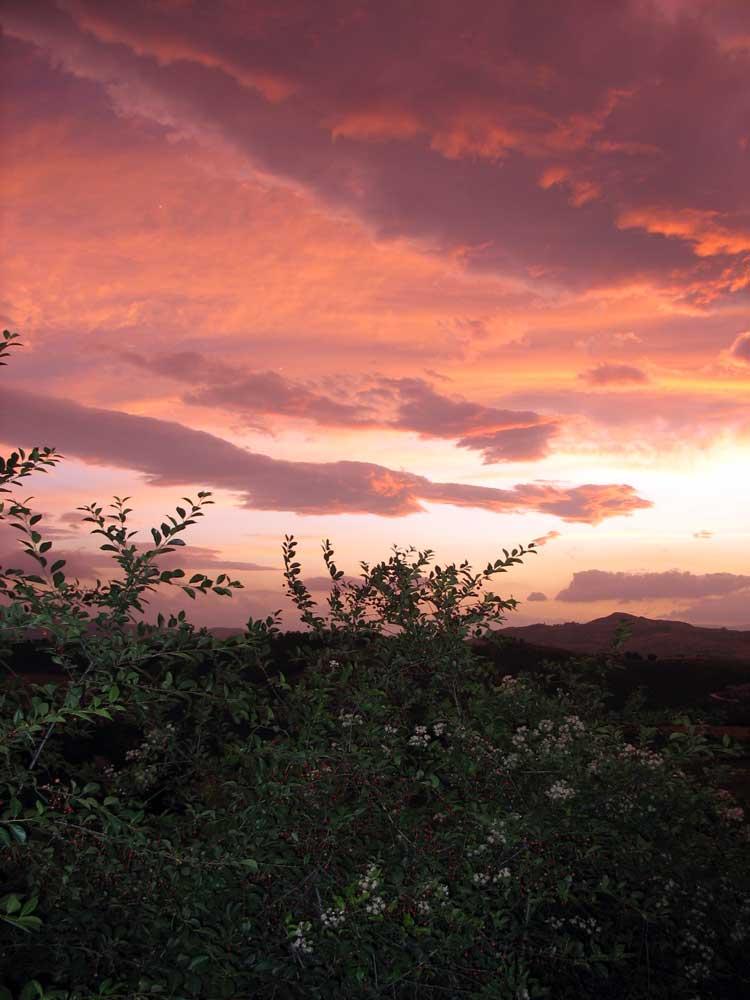 tramonto-rosa