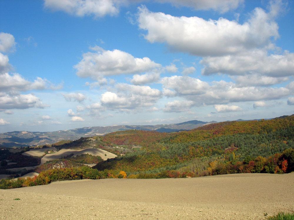 autumn-walk-3