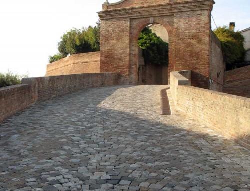 Barchi: Maialino day