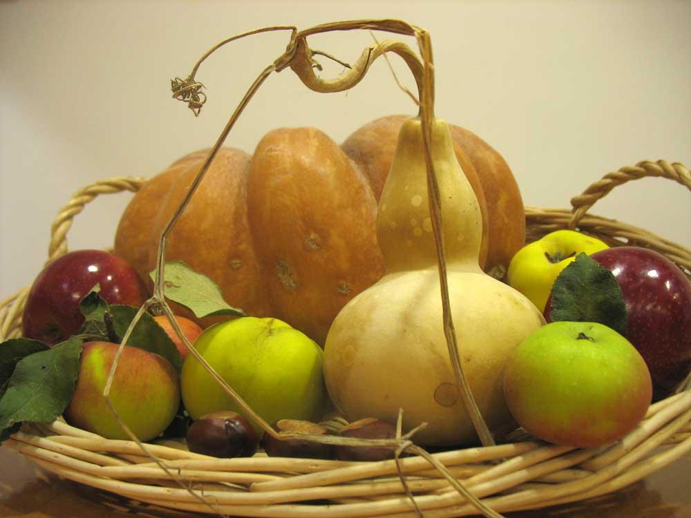 Autumn-fruits