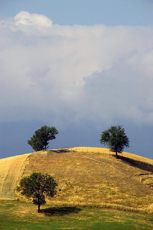 valle nuova landscapes collina giovanni
