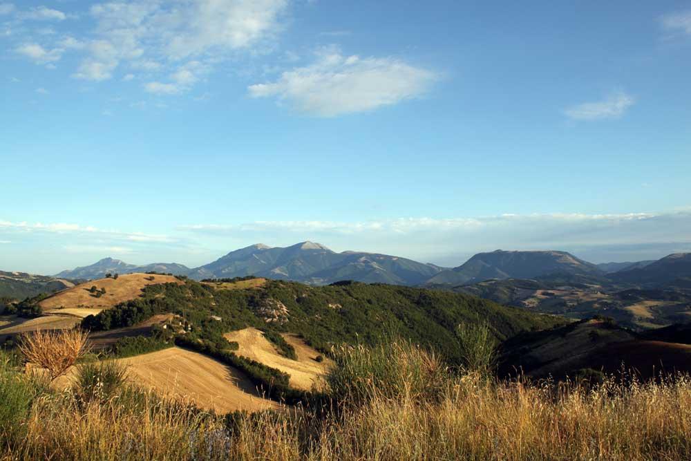 Paesaggio-luglio-2010