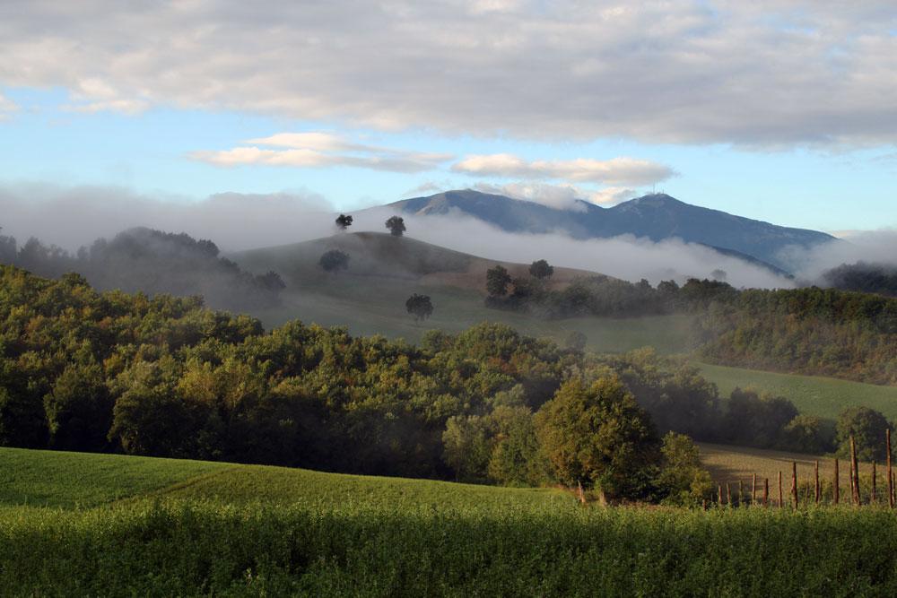 September-landscape