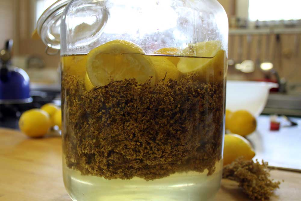 Elderflower-liqueur