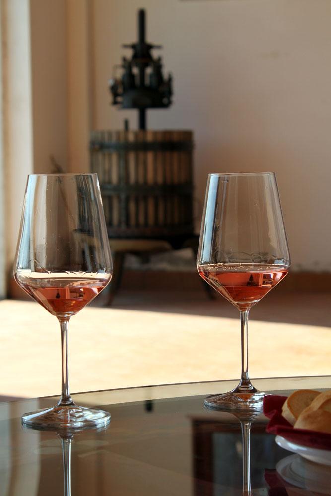 Lacrima Rosé wine Le Marche