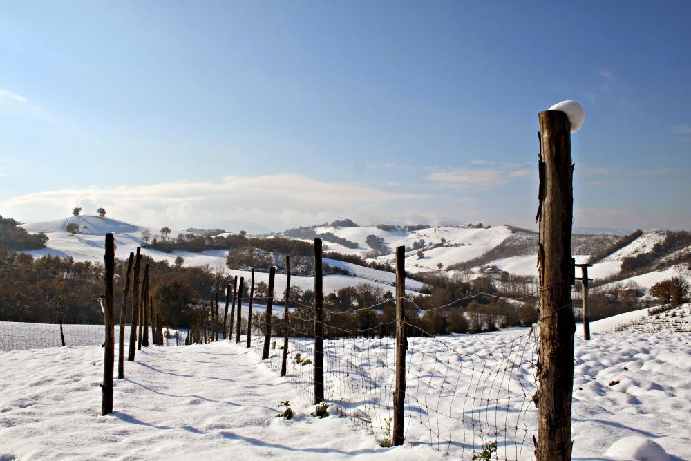 Winter in le Marche