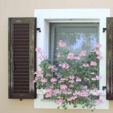 Valle Nuova window