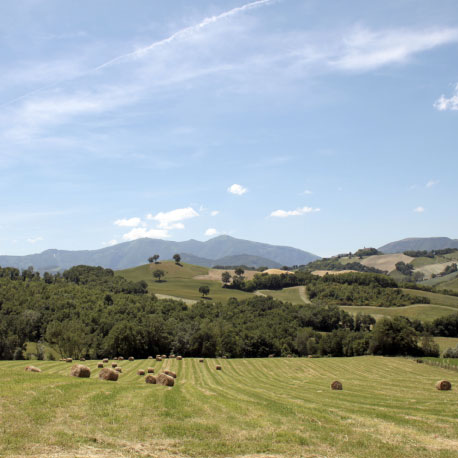 valle nuova countryside