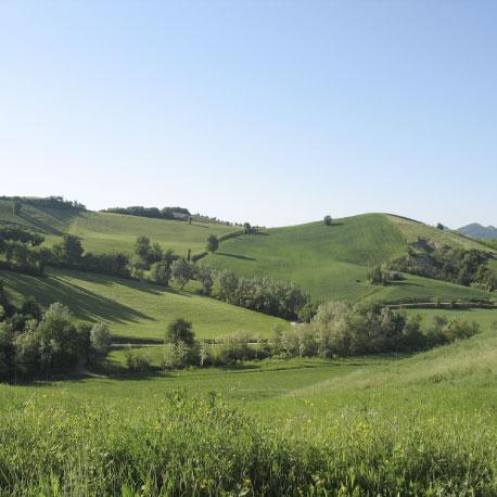 valle nuova views