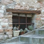 Photo of the day: window in Torricella