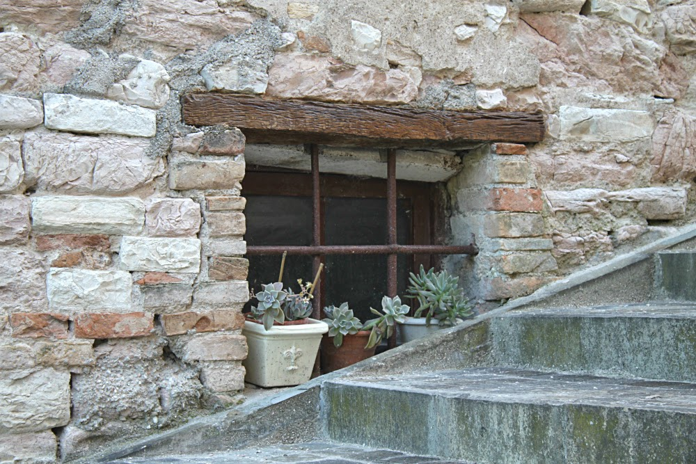 Torricella-window