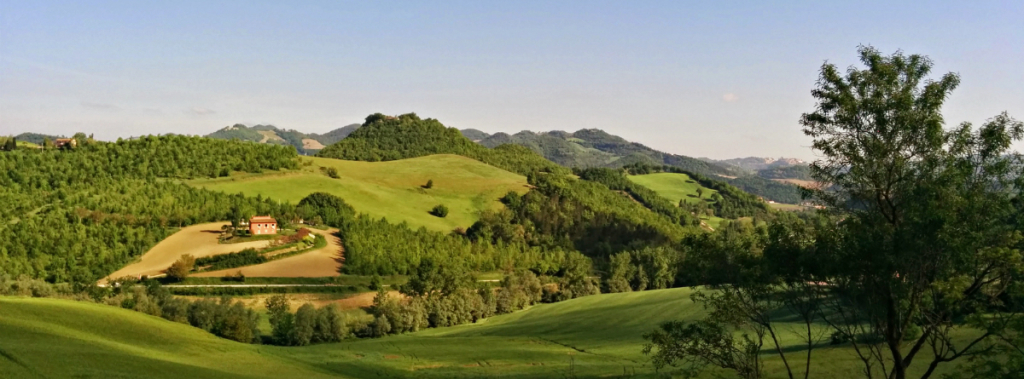 Le Marche hills MarcheOwners Direct