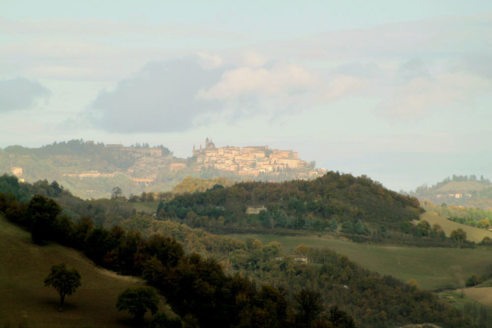 Dream of Urbino Le Marche