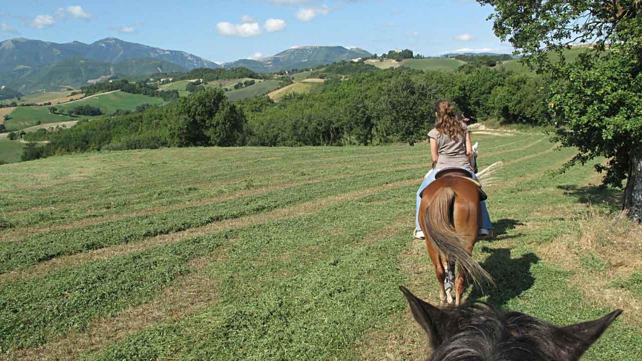 Horse riding Le Marche hills