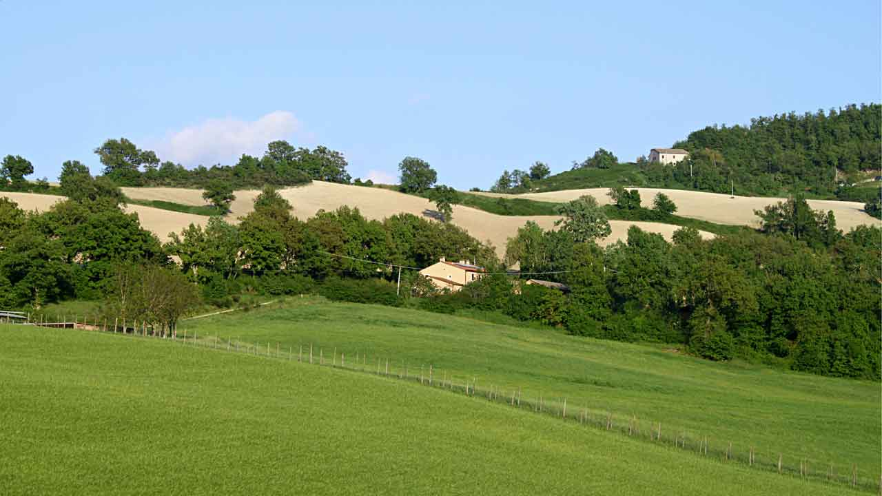 Valle Nuova and Le Marche countryside