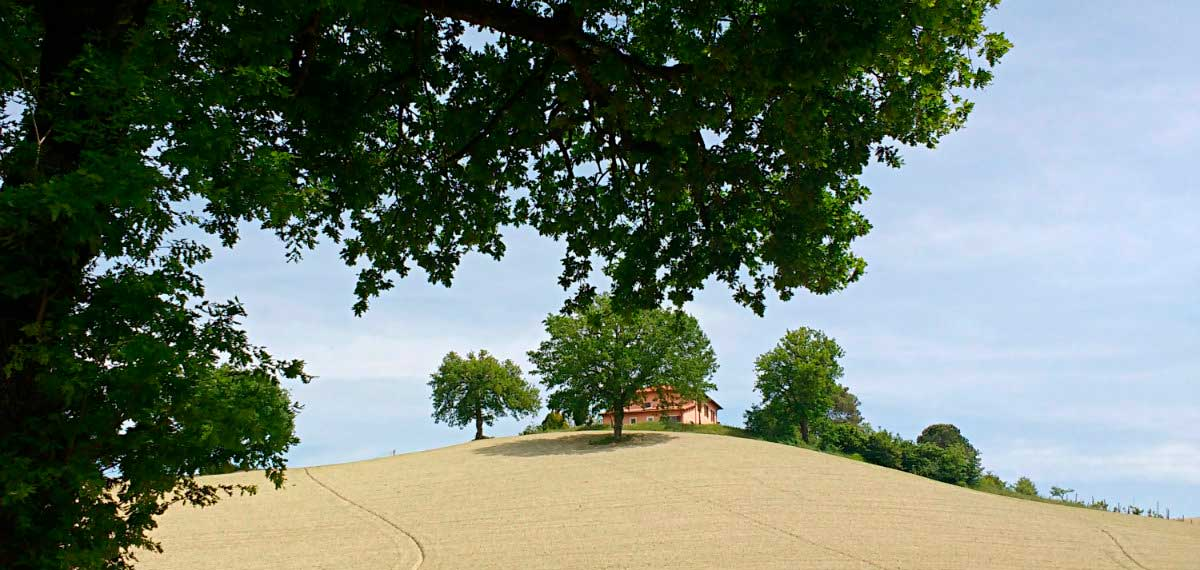Urbino farm holidays Agriturismo Marche Italy