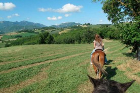 Horse riding Urbino hills Nature Italy Marche outdoors