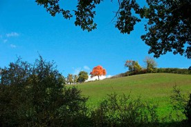 Nature Autumn Marche outdoor Countryside Urbino Italy