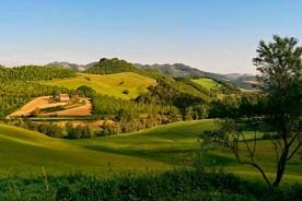 Nature Le Marche landscape fields afternoon light hills