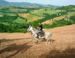 Riding landscape