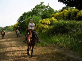 Riding monte pietralata Marche outdoor activities horseriding