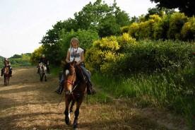 Riding monte pietralata Marche outdoor activities horseriding