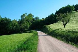 Walk Ride Marche Nature Fields Spring Summer