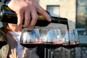 Marche food and wine holidays