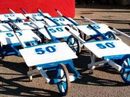 Palio della rana frog race wheelbarrow palio competition Marche Italy