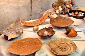 Pottery Marcello Pucci Urbino Marche Italy Art Artisan