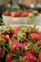 Farm to table organic strawberries jam dessert dinner Marche agriturismo