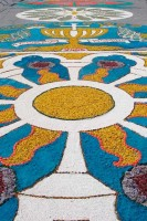 Infiorata Corpus Domini Le Marche religious festivals Italy
