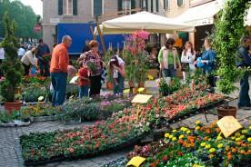 Market flower show fair Urbania Le Marche shopping Italy