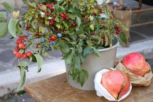Autumn food festival Marche Italy