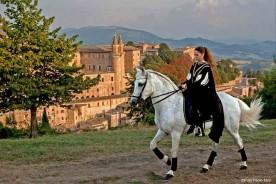 Urbino Marche Festa del Duca