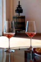 Rose wine cantina winemaker winery Marche Italy