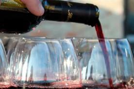 Rosso Conero Le Marche wines