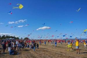 Urbino kite festival september Marche festa dell aquilone