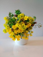 Fiori gialli full