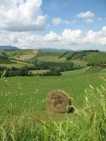 Le Marche green hills vacation rental Ecofriendly Italy holiday