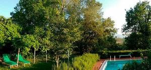 Swimming pool B&B Marche Countryside Urbino